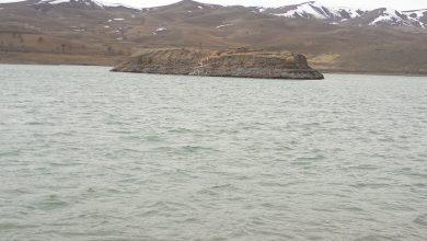 تخصیص آب از سد کلان و رفع مشکلات بیآبی منطقه شمال بروجرد مواردی است که به تصمیمگیری و پیگیری در سطح کلان نیاز دارد