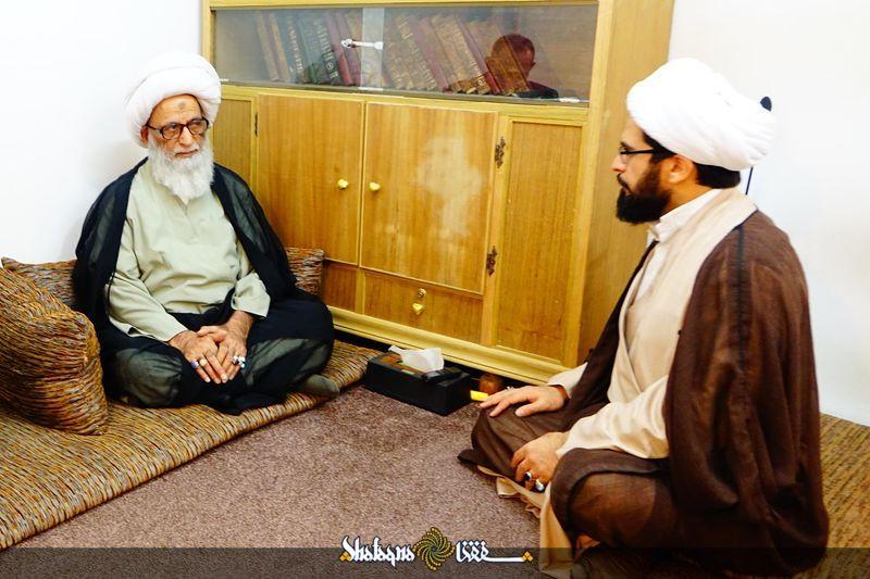 مکتب نجف/ حجت الاسلام شیخ علی نجفی: تنوع نجف اشرف، مهم و راهبردی است